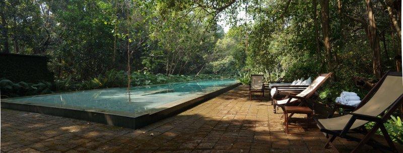 Bijoy Jain's house03 _Francesca Molteni