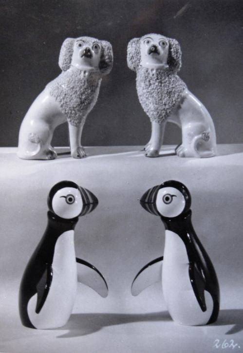 Hund og Søpapegøje